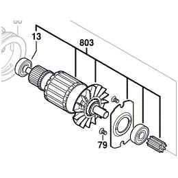 Bosch Induit avec Ventilateur de Perforateur GBH36V-LI et GBH36VF-LI (1617000473)