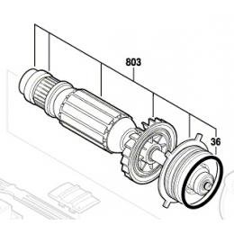 Bosch 2604011948 Induit pour outils multifonctions GOP300SCE