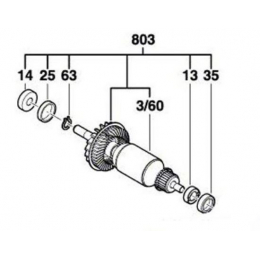 Bosch Induit pour ponceuse PBS 75 AE (1619X07526)